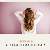 """🙆♀️🙆♂️ Reposted from @laprofeketo Hola!!! . Estoy siguiendo #Lowcarb o #Keto y se me cae el pelo a montones!!! Me faltan vitaminas?? . La respuesta es NO!! . La alimentación #keto o #lowcarb es alta en vitaminas y nutrientes si la estás siguiendo correctamente. Así que no se te cae el pelo por déficit. . Te explico: nuestro cuerpo cabelludo tiene capas de grasa, a medida que esa grasa va perdiéndose, el pelo que está """"sostenido"""" por dicha grasa, se cae ... peeeeero el folículo piloso NO se muere ni desaparece. Por lo tanto, en 3 a 4 meses notarás que todo ese pelo que botaste vuelve a salir, más sano y lindo!!! Si fuese por pérdida, yo estaría pelada xD. . Recuerda conseguir la cantidad adecuada de proteínas de origen animal en tu alimentación diaria, por su alta cantidad de zinc y biotina, y el aporte de aminoácidos para que se regenere esta fibra hecha de keratina, otra proteína. . A no desesperar!! Y si estás en verano, siempre botarás más pelo: estamos pelechando jejejeje . Espero te sirva la información, comparte con quienes la necesite y deja tus comentarios. . #lowcarbchile #lowcarb #keto #ketolife #ketostyle #obesidad #pelo #salud #vidasaludable #vitaminas #proteínas #dieta #metodogrez #nutricion #LCHF #ketoespaña #ketocolombia #ketobrasil"""