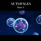"""👍🏻Reposted from @creando.cetonas 👇🏻👇🏻👇🏻 . La autofagia es un proceso catabólico, conservado evolutivamente por el cual las células se degradan y reciclan componentes endógenos intracelulares (orgánulos dañados, proteínas y macromoléculas mal plegadas o mutantes) y exógenos (virus y bacterias) para mantener la homeostasis celular (Galluzzi L. Y col. 2017). . Hay aproximadamente tres clases de autofagia: . MACROAUTOFAGIA: Utiliza el orgánulo intermedio """"autofagosoma"""". Una membrana de aislamiento (también denominada fagophore) secuestra una pequeña porción del citoplasma, incluidos los materiales solubles y los orgánulos, para formar el autofagosoma. El autofagosoma se fusiona con el lisosoma para convertirse en un autolisosoma y DEGRADAR los materiales que contiene. Los autofagosomas pueden fusionarse con los endosomas antes de la fusión con los lisosomas. . MICROAUTOFAGIA: El lisosoma mismo engloba pequeños componentes del citoplasma mediante la invaginación interna de la membrana lisosómica. (Sahu et al., 2011). . AUTOFAGIA MEDIADAS POR CHAPERONAS o CMA: Esta clase no implica la reorganización de la membrana; en cambio, las proteínas del sustrato se translocan directamente a través de la membrana lisosómica durante la autofagia mediada por chaperona. . Después de los tres tipos de autofagia, los productos de degradación resultantes se pueden usar para diferentes propósitos, como la síntesis de nuevas proteínas, la producción de energía y la gluconeogénesis. . La mas estudiada es la macroautofagia o Autofagia y como dijimos, ocurre en el autofagosoma """"contenedor de basura"""", que recoge componentes celulares y los lleva al """"centro de reciclaje"""" celular local, que se conoce como Lisosoma. Acá se realiza la descomposición en partes mas pequeñas que luego se reutilizarán. #autophagy #autofagia #fasting #ayunointermitente #lowcarb"""
